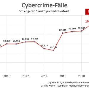 Cybercrime Statistik Identitätsdiebstahl